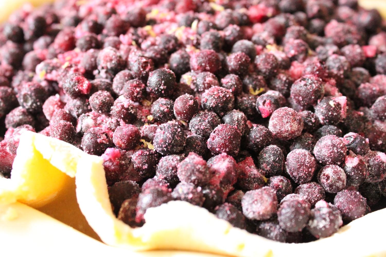 Blueberry Pie2