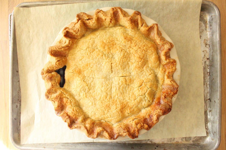 Blueberry Pie4