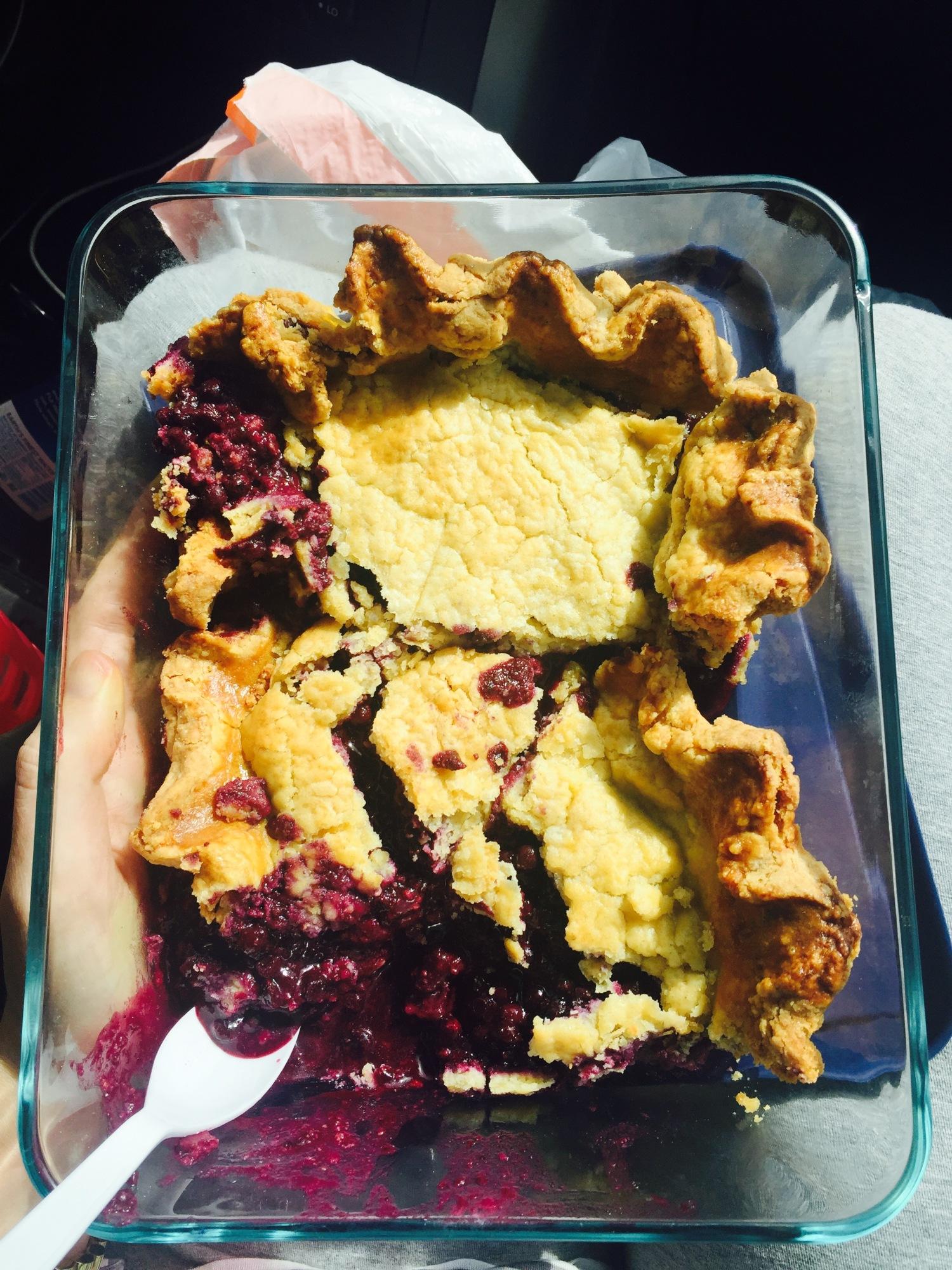 Blueberry Pie5
